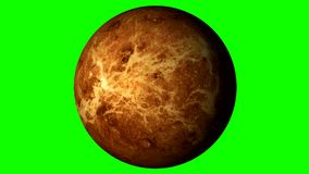 Venus Rotating on a Solid Green Background. Loopable