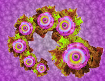 Venus`s flowers. It is an abstract art titled flowers of venus, it can be a background Stock Image