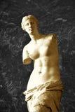 Venus. The sculpture Venus from Paris Royalty Free Stock Photos