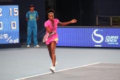 Venus Williams (de V.S.), tennisspeler royalty-vrije stock afbeelding