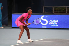 Venus Williams (USA), tennis player Stock Image