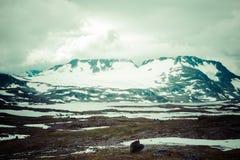 Veobrean glacier seen from Glittertind mountain (Jotunheimen Nat Stock Photography