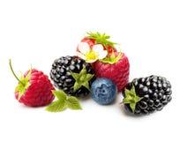 verão Berry Fruits Isolated Fotografia de Stock