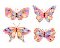 verão da borboleta da aquarela Fotografia de Stock Royalty Free