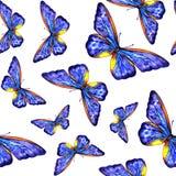 verão da borboleta da aquarela Imagens de Stock