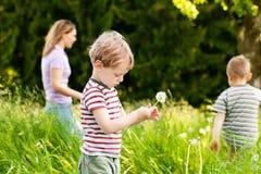 Verão da família - jogando no prado Imagem de Stock Royalty Free