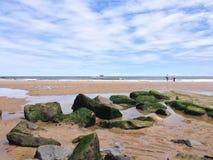 verão da praia do tynemouth Imagens de Stock Royalty Free