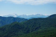 verão do céu da floresta da paisagem da montanha Fotos de Stock