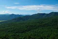 verão do céu da floresta da paisagem da montanha Imagens de Stock Royalty Free