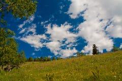 verão do dia da montanha Imagens de Stock Royalty Free