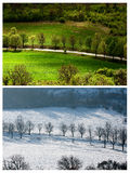Verão do inverno da paisagem Imagens de Stock