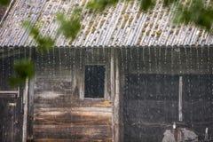 verão do un do dia chuvoso Fotos de Stock