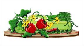 Verão dos vegetais na placa Fotos de Stock Royalty Free