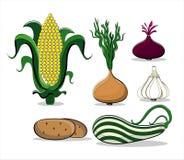 Verão dos vegetais no fundo branco Foto de Stock