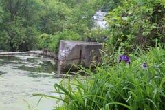 verão em Cederburg Wisconsin Fotos de Stock Royalty Free