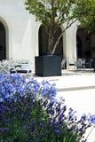 verão em Porto Montenegro, Tivat fotos de stock royalty free