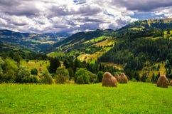Verão em Romania Imagem de Stock
