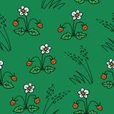 verão forest-18 ilustração royalty free