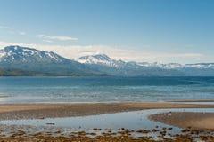 verão nórdico em Ofotfjord, Noruega fotografia de stock