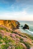 verão na costa de Corish Fotos de Stock