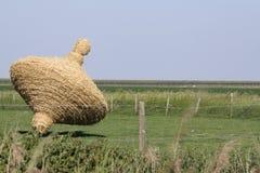 Verão na província holandesa de Zeeland em Holland Foto de Stock