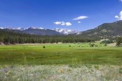 Verão nas Montanhas Rochosas Foto de Stock