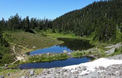 verão no lago Mazama imagens de stock