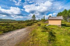 verão no parque nacional de Jostedalsbreen Condado de Fjordane do og de Sogn fotos de stock