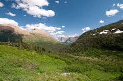 Verão no vale do lagópode dos Alpes Fotos de Stock