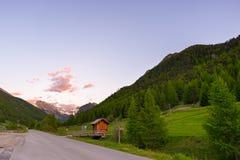 Verão nos alpes O prado alpino de florescência e a floresta verde luxúria ajustaram-se entre a cordilheira da alta altitude Fotografia de Stock