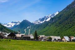 verão nos cumes, estância turística, vila das férias O prado alpino de florescência e a floresta verde luxúria ajustaram-se entre Foto de Stock