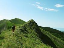 Verão que trekking Fotografia de Stock Royalty Free