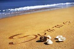 Verão, seashell, areia e o oceano Fotos de Stock