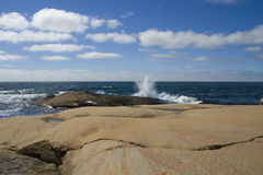 Verão sueco na costa oeste Fotografia de Stock