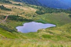 verão, Ucrânia, montanha, por do sol, carpathian, cordilheira, paisagens, turismo, Fotos de Stock Royalty Free