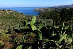 verão: uma angra do cabo das cruzes na Espanha com mar azul imagens de stock