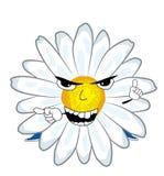 Verärgerte Kamillenblumenkarikatur Stockfotos