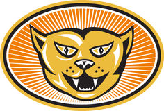 Verärgerte Katze-Kopf-Frontseite Retro- Lizenzfreie Stockfotografie