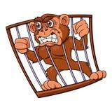 Verärgerter Affe im Käfig Stockfotografie