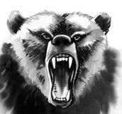 Verärgerter Bär stock abbildung