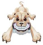 Verärgerter Hund Lizenzfreies Stockfoto