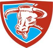 Verärgerter Texas Longhorn Bull Head Shield-Holzschnitt Stockbild