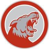 Verärgerter Wolf Wild Dog Head Circle Retro- Lizenzfreie Stockfotografie