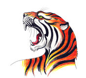 Verärgertes tiger vektor abbildung