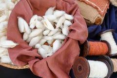 Ver à soie blanc dans le panier Image libre de droits