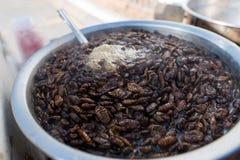 Ver à soie cuit vendu dans la rue, une délicatesse coréenne images libres de droits