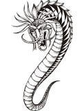 Ver oriental de dragon Image stock
