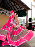 Veracruz Dance. A dancer from the Ballet Folklorico Nacional de Milwaukee performs a dance traditional to the Veracruz area of Mexico during the 2014 Wisconsin Royalty Free Stock Photo