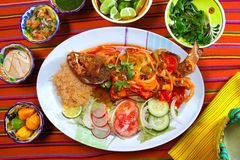 Veracruzana style fish mexican seafood Royalty Free Stock Photos