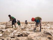 Verafgelegen mensen die zout van zoute vlakten in Verafgelegen gebied ontginnen, Danakil-Departement royalty-vrije stock afbeeldingen